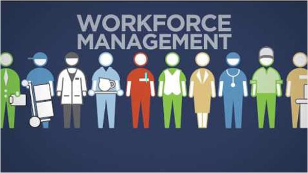 Workforce Management Software Leave Management Team Management